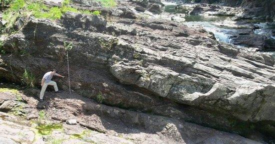 篠山層群地層