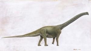 (写真)「丹波竜」 の全身復元図