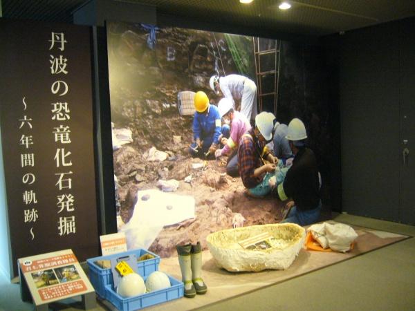兵庫県立人と自然の博物館 http://www.hitohaku.jp/