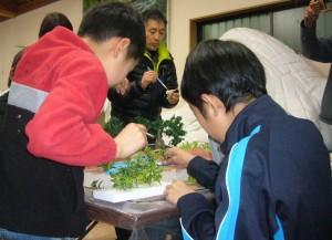 葉を植える