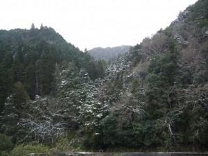 元気村周辺山山