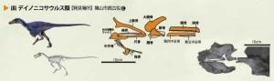 化石マップ(デイノニコサウルス)