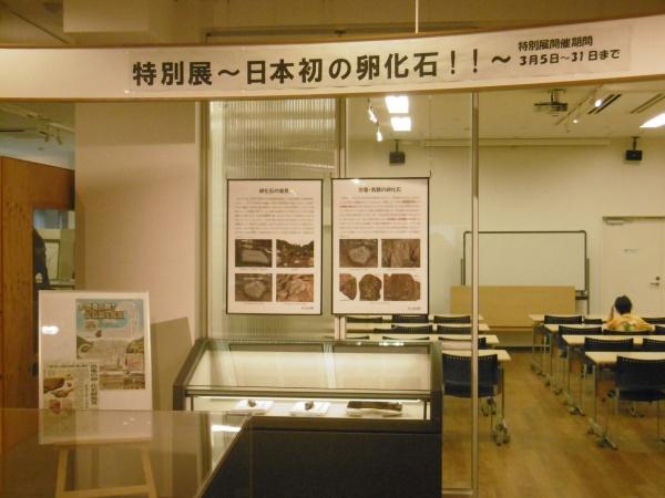 ちーたんの館でも卵化石の展示と説明会の開催