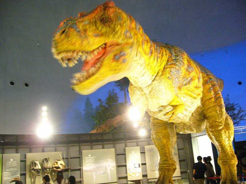 23年度・第5回「竜と獣の道学・連続セミナー」in福井県勝山