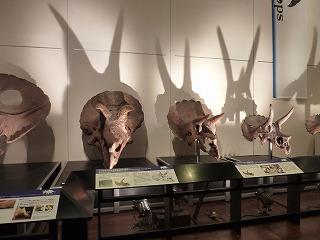 恐竜展に行ってきました!