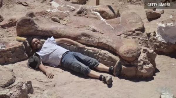 100トン規模(ゾウ14頭分)世界最大の恐竜化石発見!!