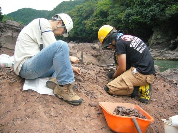 恐竜化石の公開発掘調査で化石発見!!
