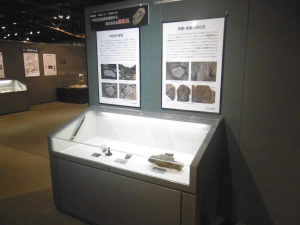 密集した卵化石(岩塊)の標本を展示!
